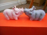 Salt and Pepper set - Rhinos