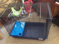 Hamster / Rat / Small Animal Cage & Accessories.
