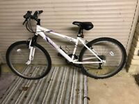 Ladies Mountain Bike (small)