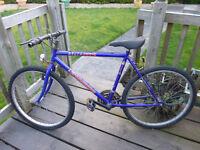 Gents mountain bike 15 speed