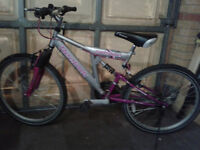 Ladies/Girls Reebok Bike