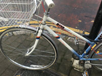 Vintage Ladies Raleigh Riva Bike Sportif with white wirebasket