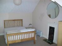 Bright spacious attic room