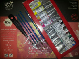 12 Oil Colours, 4 brushes and Linen Canvas for sale