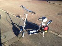 Zipper petrol scooter