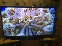 """BUSH 55"""" FULL HD LED TV"""