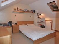 1 Double room in a prof. houseshare; available 1st June - £480