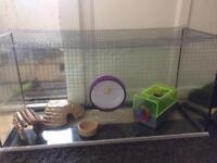 Hamster/small animal glass tank