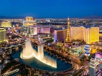 1 return flight ticket Manchester- Las Vegas, 25.Mar-1.Apr