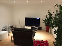DSS ACCEPTED** large double studio inc all bills and free wi-fi** dss accepted