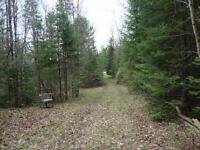 10 Acres Land for Hwy 62 Madoc Township