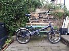 Folding Apollo single speed FULLY SERVICED can be carried on buses or trains