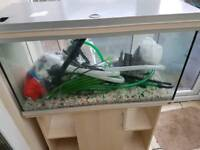 aquarium with filter and cabinet(300L)