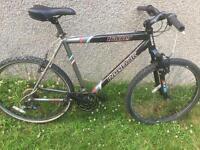 """Reebok mtb bike 26"""""""
