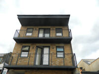 3 Bedrooms Flat - Forest Gate Area