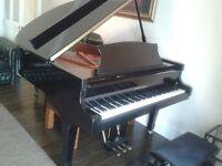 Fantastic 5ft Black gloss baby grand piano