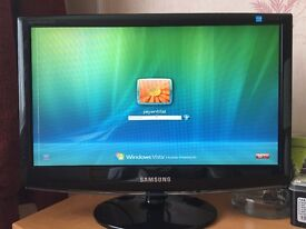 Samsung 19 inch monitor ( can deliver)