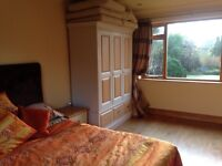 Beautiful and sunny dual aspect double room for rent in Nottingham