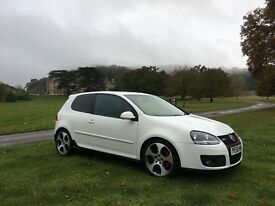 Volkswagen Golf GTI Candy white FSH LOADED