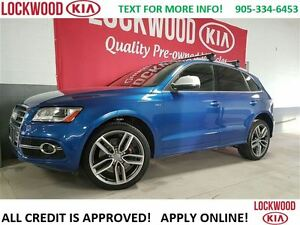 2015 Audi SQ5 3.0T Progressiv - WINTER TIRES PKG INCL