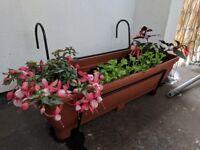 Balcony/hanging/fence gardening planter