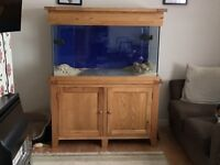 As new 4ft marine aquarium