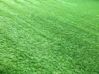 Astro Turf Grass Off Cut Approx 20 SQ M