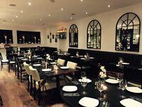 Experienced Waiter for trendy Greek Restaurant