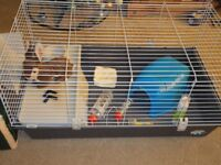 rabbit/ guinea pig cage and accessories