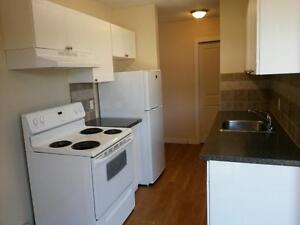 Renovated 2 bdrm Suite - Avail 1st - $960.00