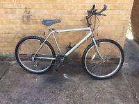 Raleigh max mans mountain bike