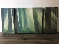 Green Forest Woodland 3 Panel Canvas