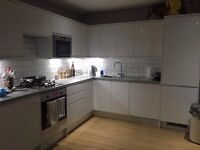 One big double room in flatshare (4 bedroom flat) in Hither Green/Lewisham to rent - £720 pcm all in