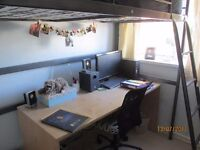Large pine effect study desk