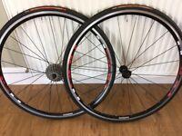 Shimano R500 Road Bike Wheels. Vittoria Corsa CX Tyres. Tiagra 10sp 12-28 Cassette.