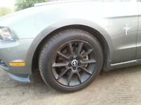 "18 "" Mustang Rims with Plasti Dip"