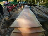 Larch planks/flooring/boards /beams/cladding