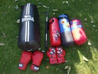 punch bags Lonsdale etc , boxing gloves and power bar from £5
