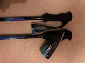 Solomon ski poles