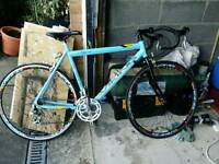 Viking Racing Bike