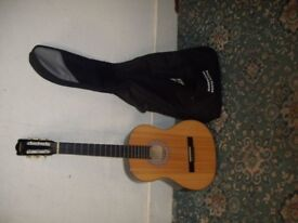 Artist Guitar with Bag ID 601/4/18