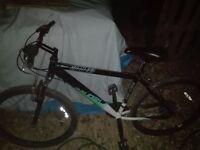 Raleigh Venture Mountain Bike for sale