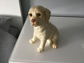 Staffordshire Labrador figure