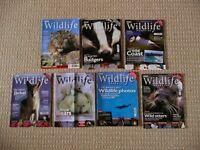 7 BBC Wildlife Magazines Nature Travel Environment Animal Behaviour Topics etc
