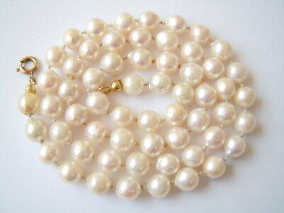 Edle Perlenkette einzeln geknotet mit 333/8K GG Gold Federring 25,2 g/50 cm