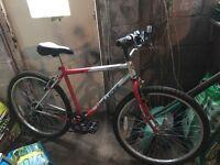 Challenge gents mountain bike 6 gears 19inch frame 26 inch alloy wheels