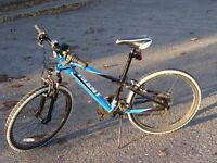 Boys Giant mountain bike 24 inch wheels and 21 gears. Excellent condition.