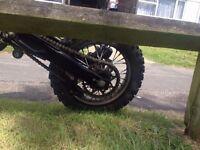 Pit bike stomp x 125
