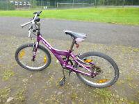 Scruffy kids bike but good wheels, brakes, gears make it good to go