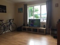 Room available in a bright, clean 2 bed flat by the harbourside